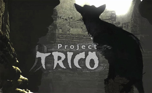 project_trico1