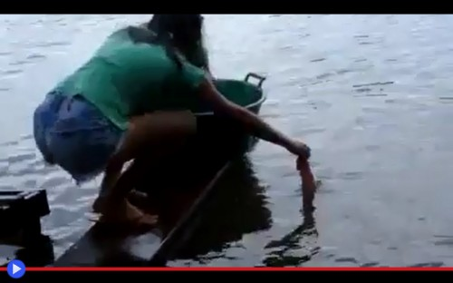 Piranha Girl