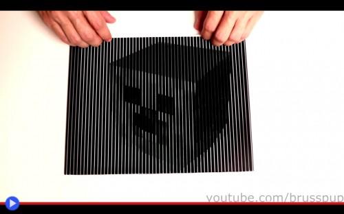 Brusspup Optical