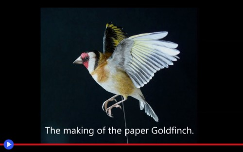 Paper Goldfinch