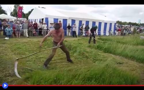 Scythe Festival