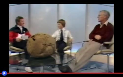 Giant Puffball 3