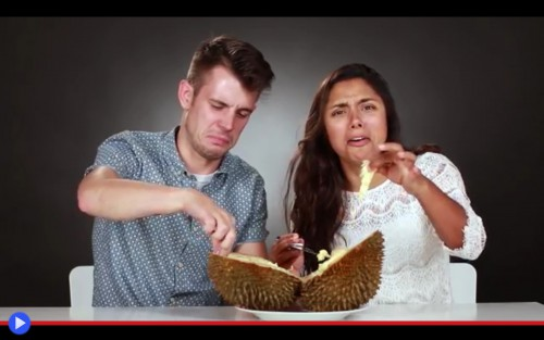 Taste the durian