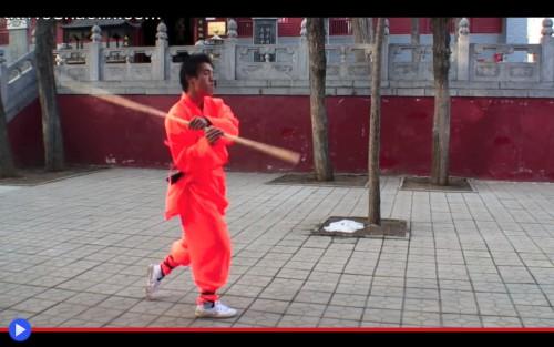 Yin Shou Gun 2