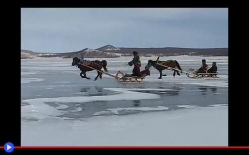 Mongolian Horse Sledge Race