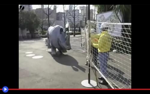 Rhino Escape