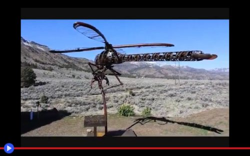 Helicopter Dragonfly