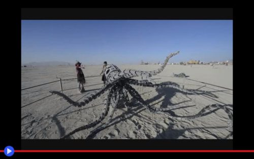 Mechateuthis Burning Man
