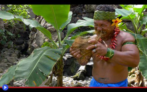 Samoa Coconut