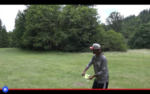 Disc Golf Albatross