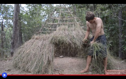 Primitive Technology Grass Hut